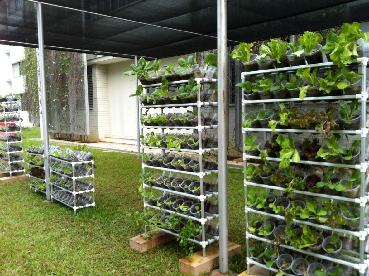 Wonderful vertical vegetable garden for Home vertical garden