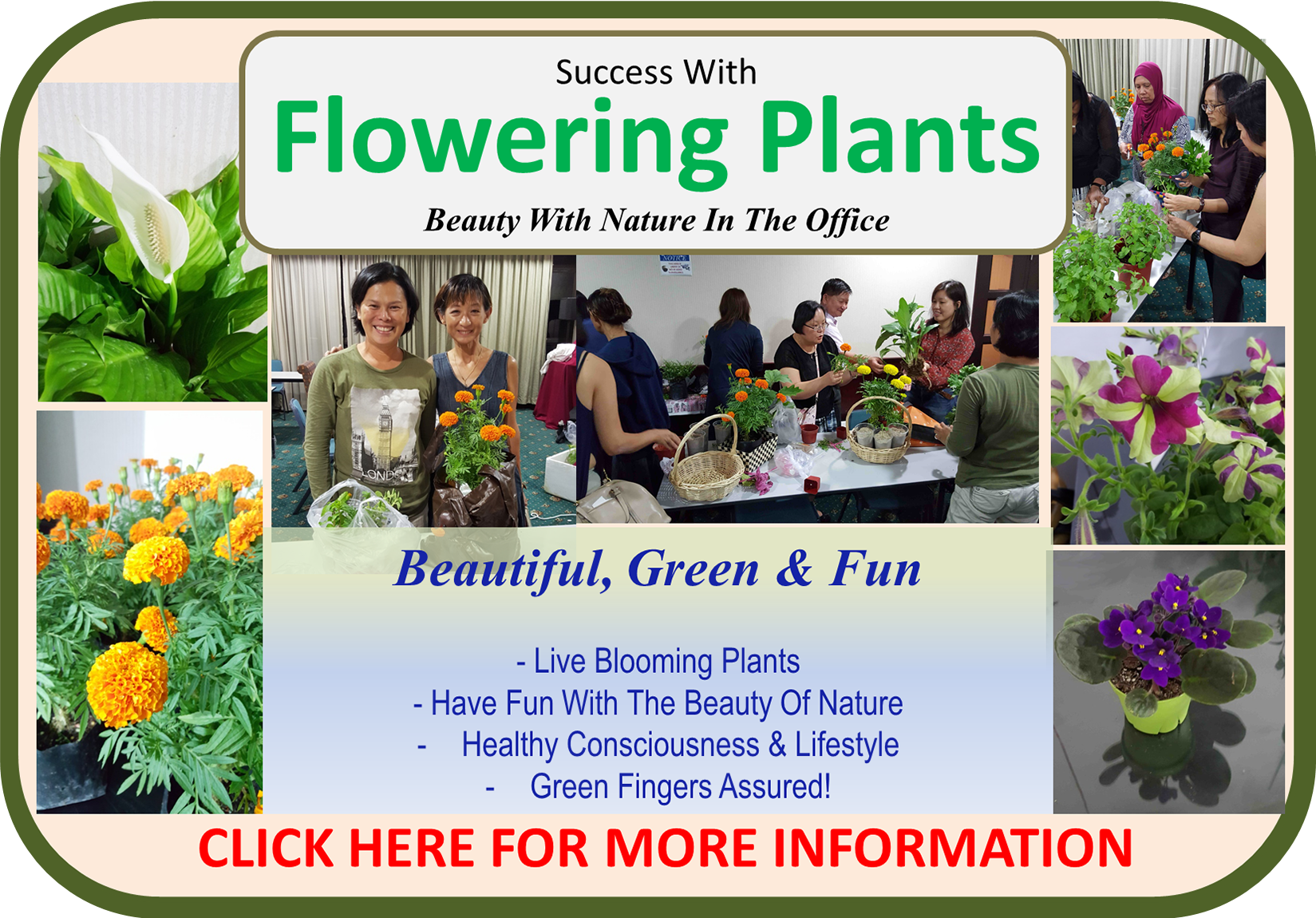 Success With Flowering Plants